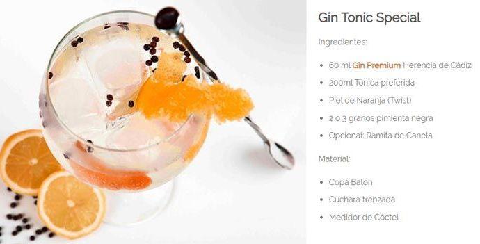 Gin Tonic Especial