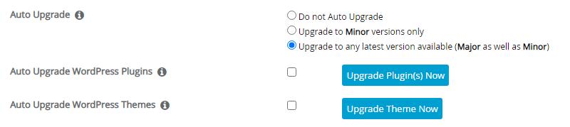 Auto Upgrade WordPress