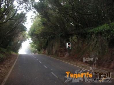 Zona de Pico del Inglés detalle de la carretera