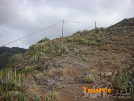 PR TF 5 intersección con sendero a Playa de Antequera