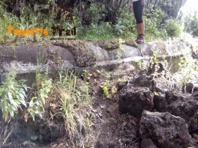 Cruce del Canal Aguamansa (foto 4)