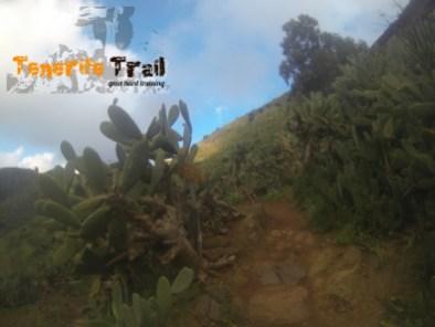 Ascenso a Pico del Inglés en la zona de la vaquería