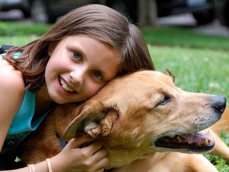 pet-therapy-ottobre-19-news-gdbmb