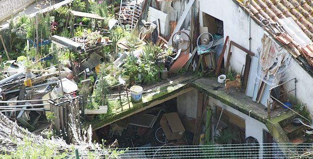 giardino disordinato