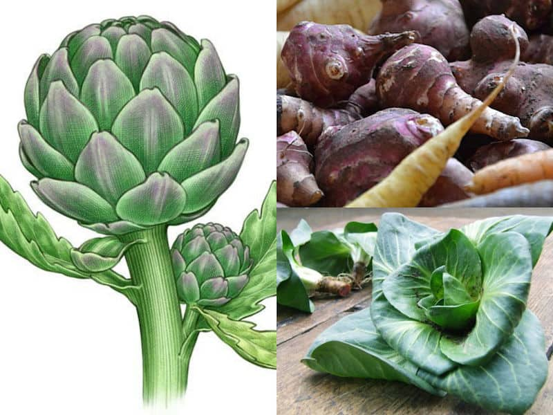 5 ortaggi perenni per l'orto