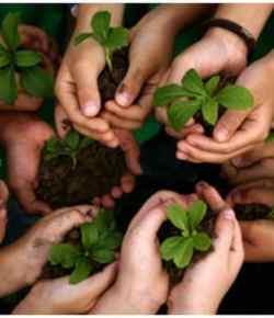 13 consigli per giardinieri… in erba!