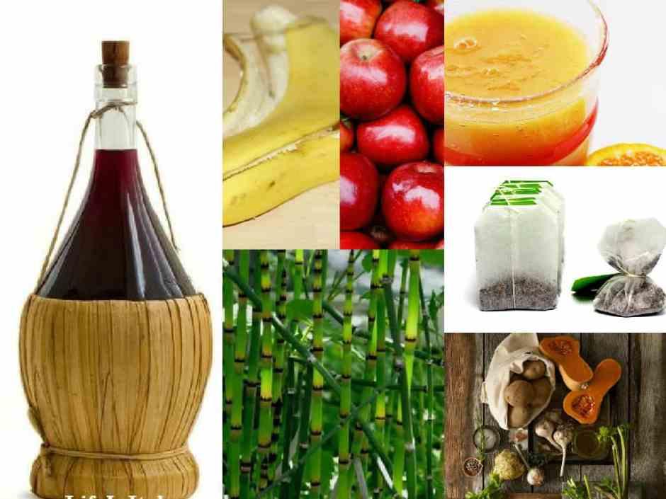 6 idee per creare un composto rivitalizzante per le piante