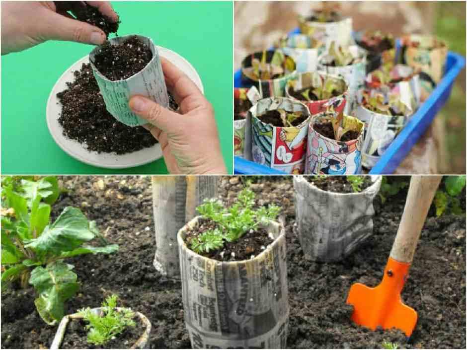 realizzare semenzai biodegradabili con la carta
