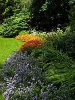 7 idee per realizzare un giardino verticale in maniera for Creare un giardino semplice