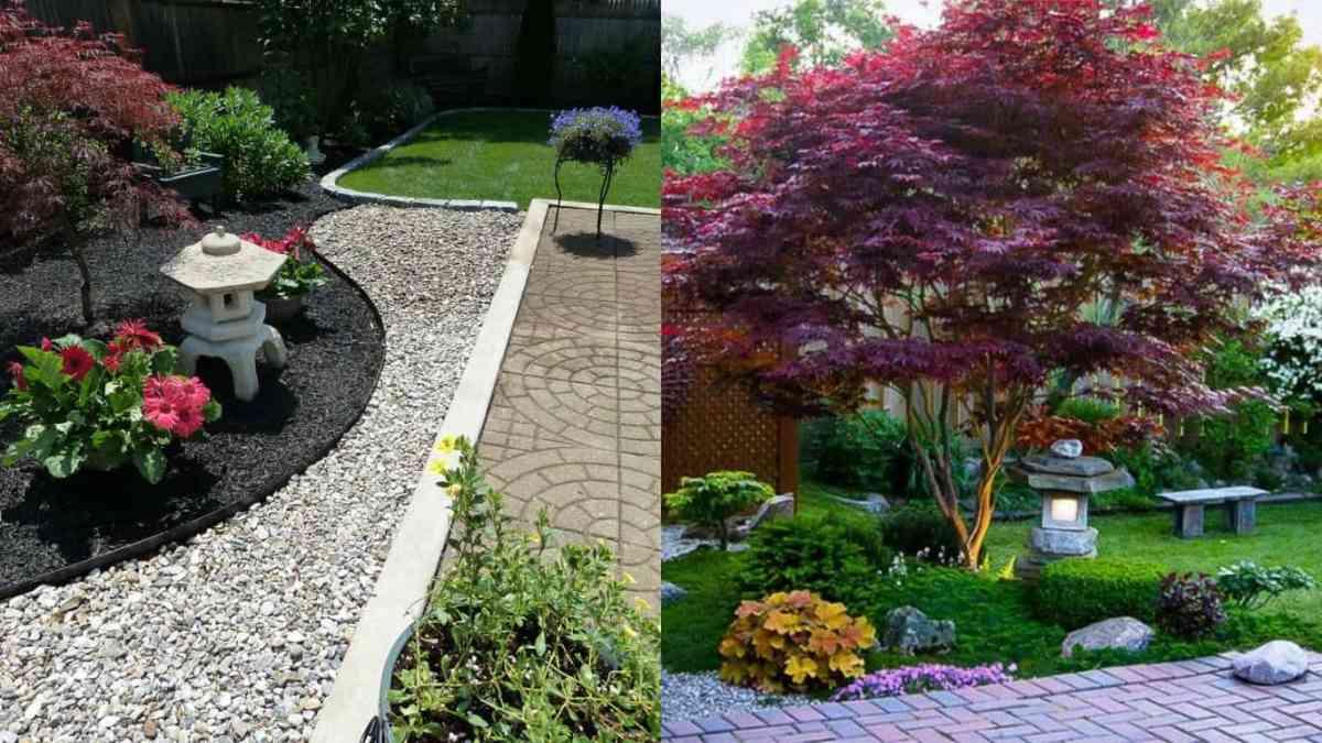 Giardino giapponese caratteristiche e realizzazione for Progettare un giardino