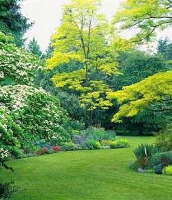 Giardini da sogno: 12 linee guida per realizzare un paesaggio naturale suggestivo e rilassante