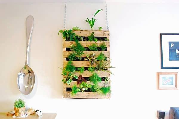parete verticale utilizzata come fioriera alternativa per decorare la parete di casa
