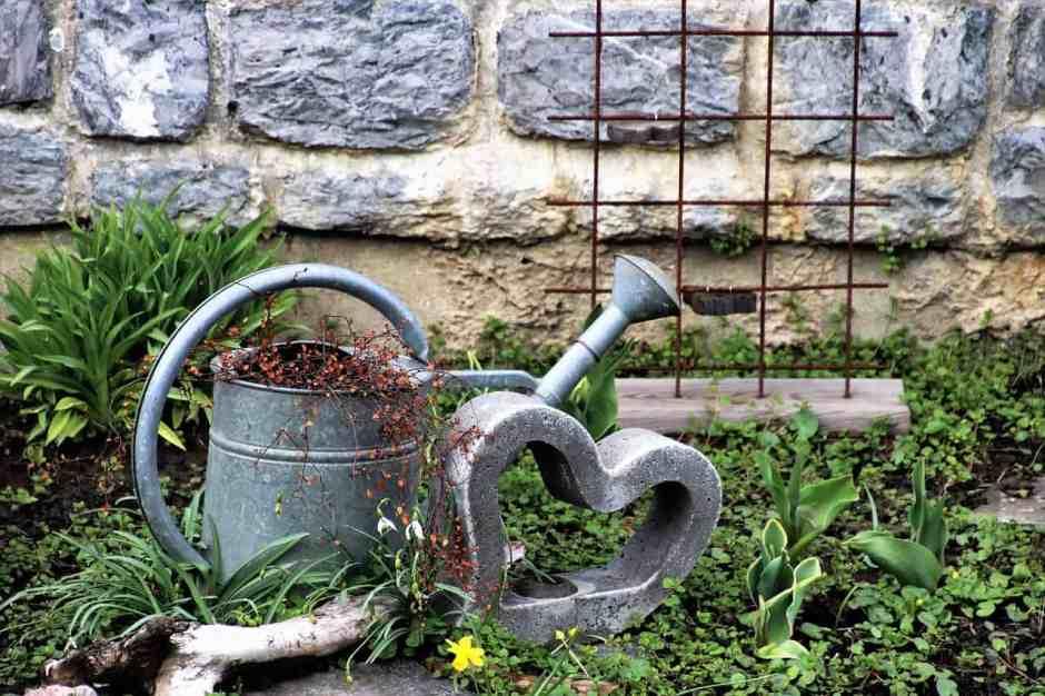 Una delle prime cose da imparare, se volete cominciare a fare giardinaggio o a coltivare l'orto, è che l'organizzazione è tutto