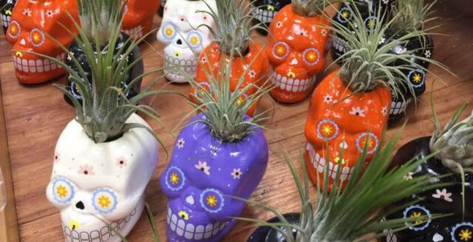 Vasi per le piante grasse Mexico style