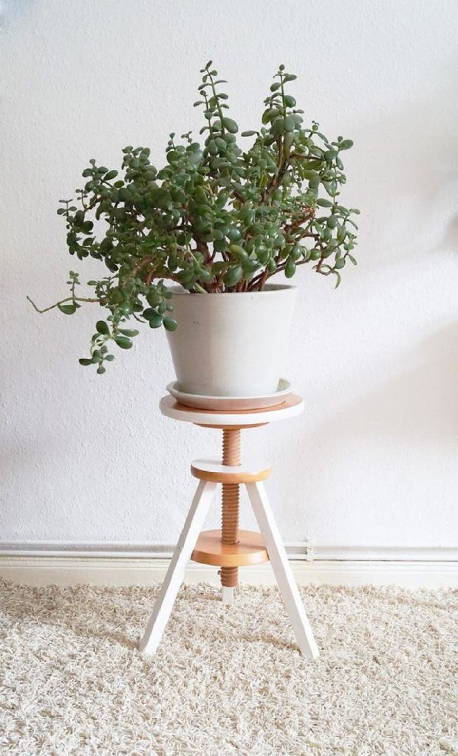 Piedistallo moderno per piante grasse