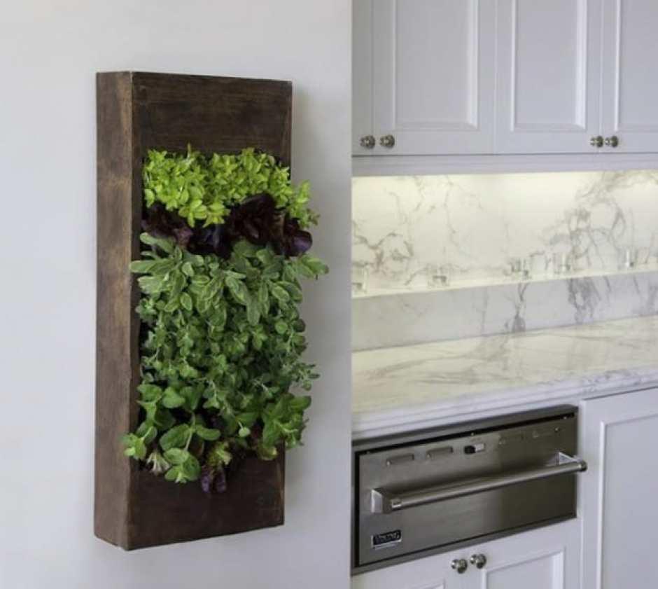Contenitore verticale per le piante all'interno della cucina