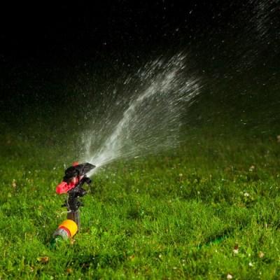 irrigazione del prato di sera