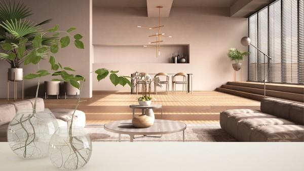 zona living con piante in vaso di acqua, idrocoltura idroponica