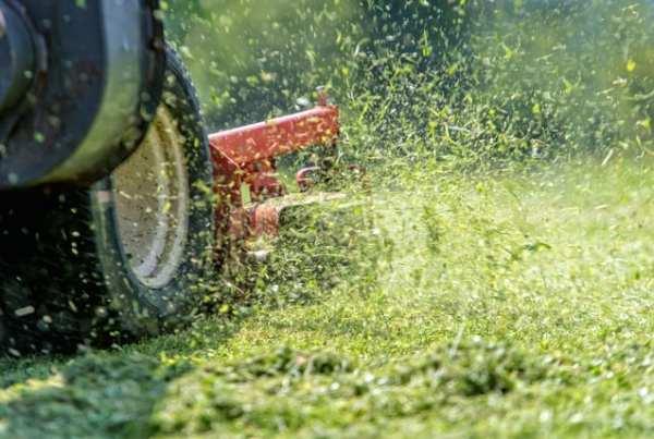 trattorino tagliaerba per il prato grande
