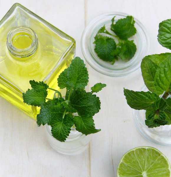 5 Meilleures plantes pour lutter contre la fatigue