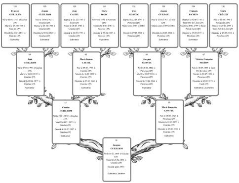Arbres Et Listes Généalogiques