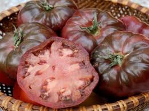 Les diff rentes sortes de tomates guide resto paris - Tomate de crimee ...