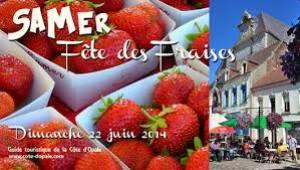 fraises de Samer1