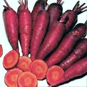 Quelques couleurs de carottes guide resto paris trouvez les meilleures tables d nichez de - Conservation des betteraves rouges ...