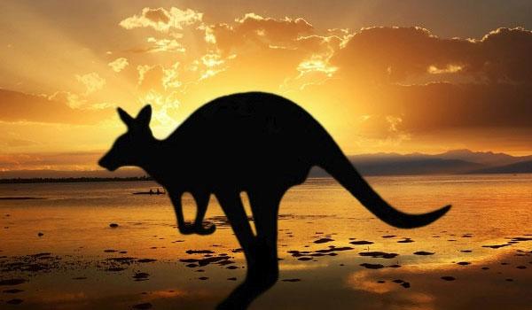 Australien Tours Rejsebureau USA Tours