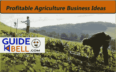 Best money making agriculture business ideas in India 2021