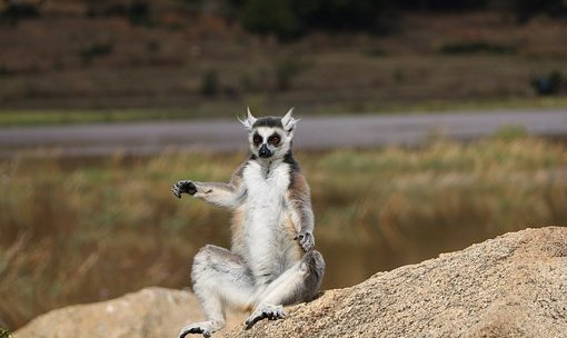 Les endroits les plus visités de Madagascar