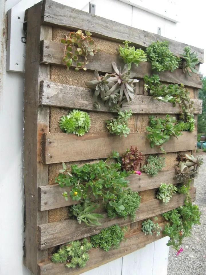 Vegetable Garden Box Instructions