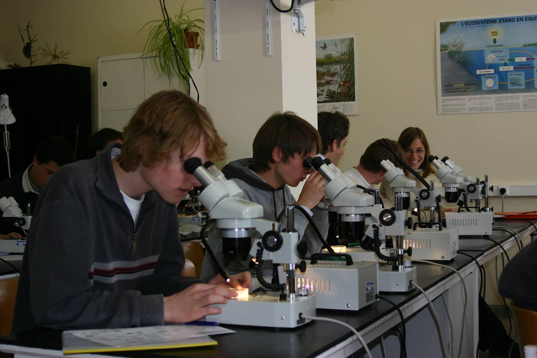 Laboratoire biologie