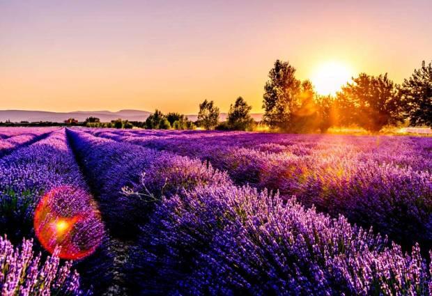 """10 destinazioni nelle tonalità """"ultra violet"""", il colore Pantone dell'anno per il 2018"""