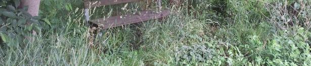 Una panchina lungo la ciclabile ADIGE-GARDA