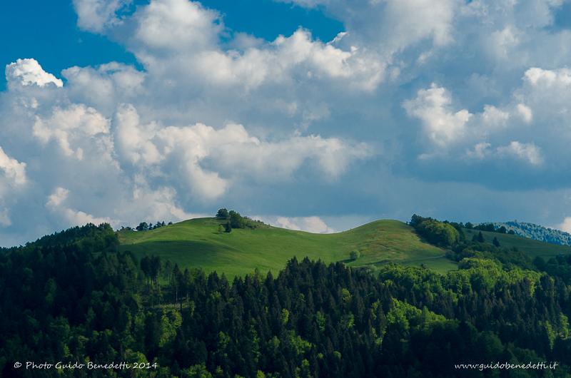 Stagioni2014-WallPaper-113