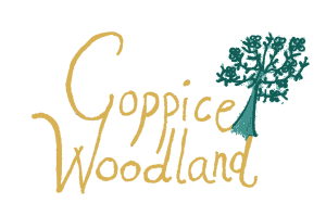 The Coppice Woodland