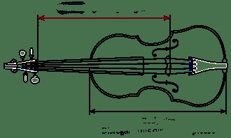 Pour choisir le jeu de cordes Warchal Amber pour alto qui vous conviendra, mesurez la longueur vibrante !