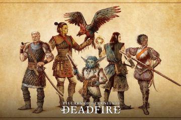 retraso de pillars of eternity 2: deadfire