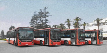 City Bus Transport