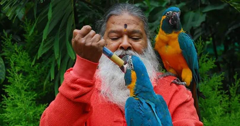 Dr Swamiji feeding a parrot tcm25 477001 - O maior aviário do mundo - O aviário mágico