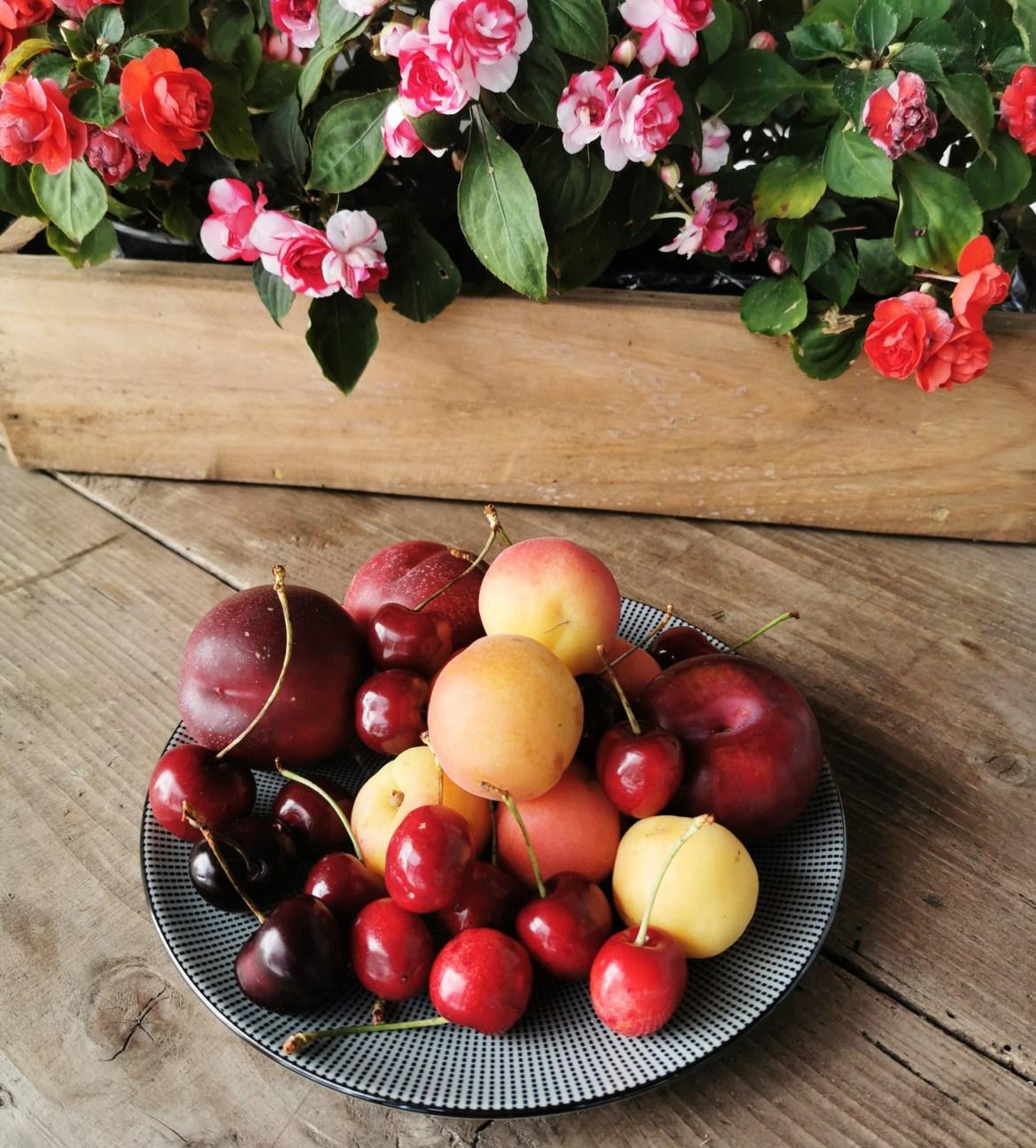 frutas a la sarten con yogur