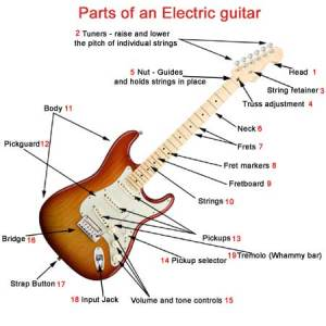 Parts of an electric guitar  What makes a electric guitar