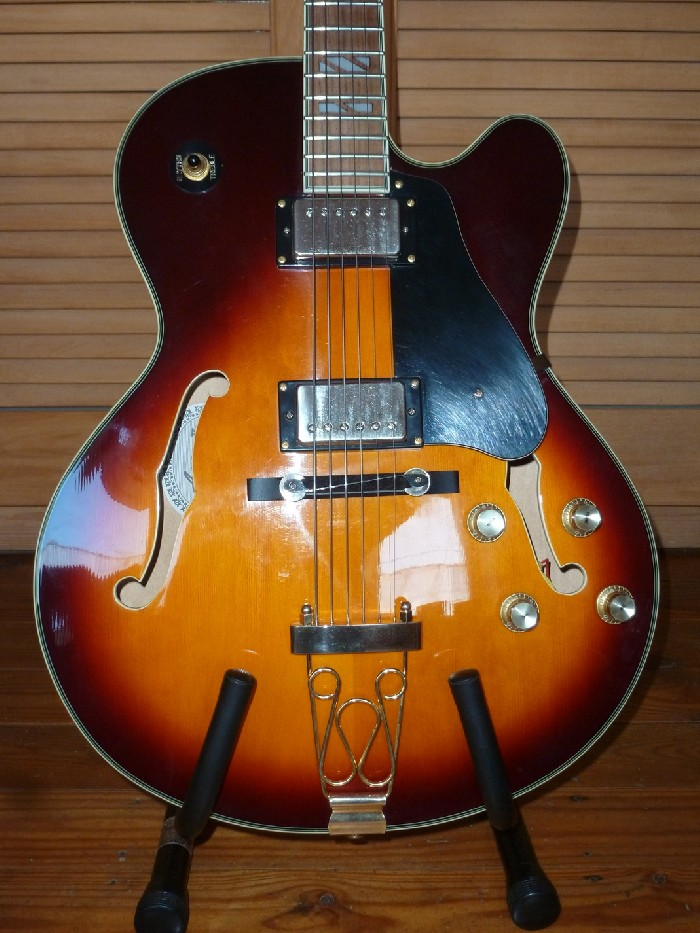 Guitare Lectrique Hollow Body Aria FA 70 Aria Pro II