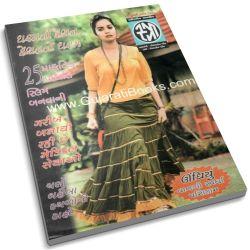 Stree Gujarati Magazine