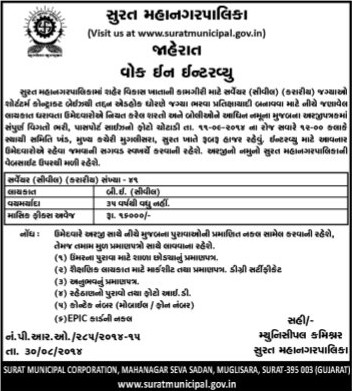 Surat Municipal Surveyor Recruitment 2014