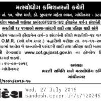 Cof Gujarat Field man final result 2016 -cof.gujarat.gov.in