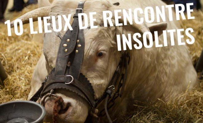 Les insolites d'une vallée à Lussault-sur-Loire