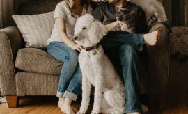 Avoir un chien en couple