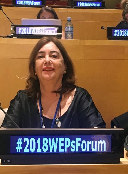 W20 - Women 20 of G20 - in CSW62 in 2018 - Gulden Turktan wepsforum
